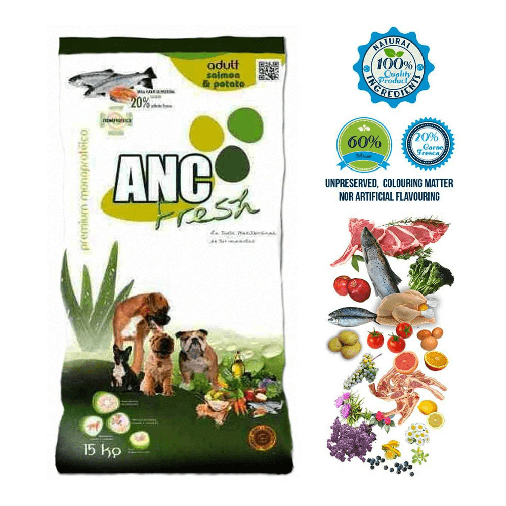 ANC F S