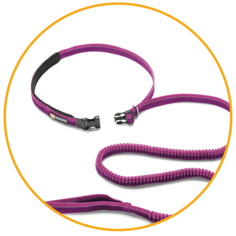 Product Page Key Features Roamer Leash 02 472x472