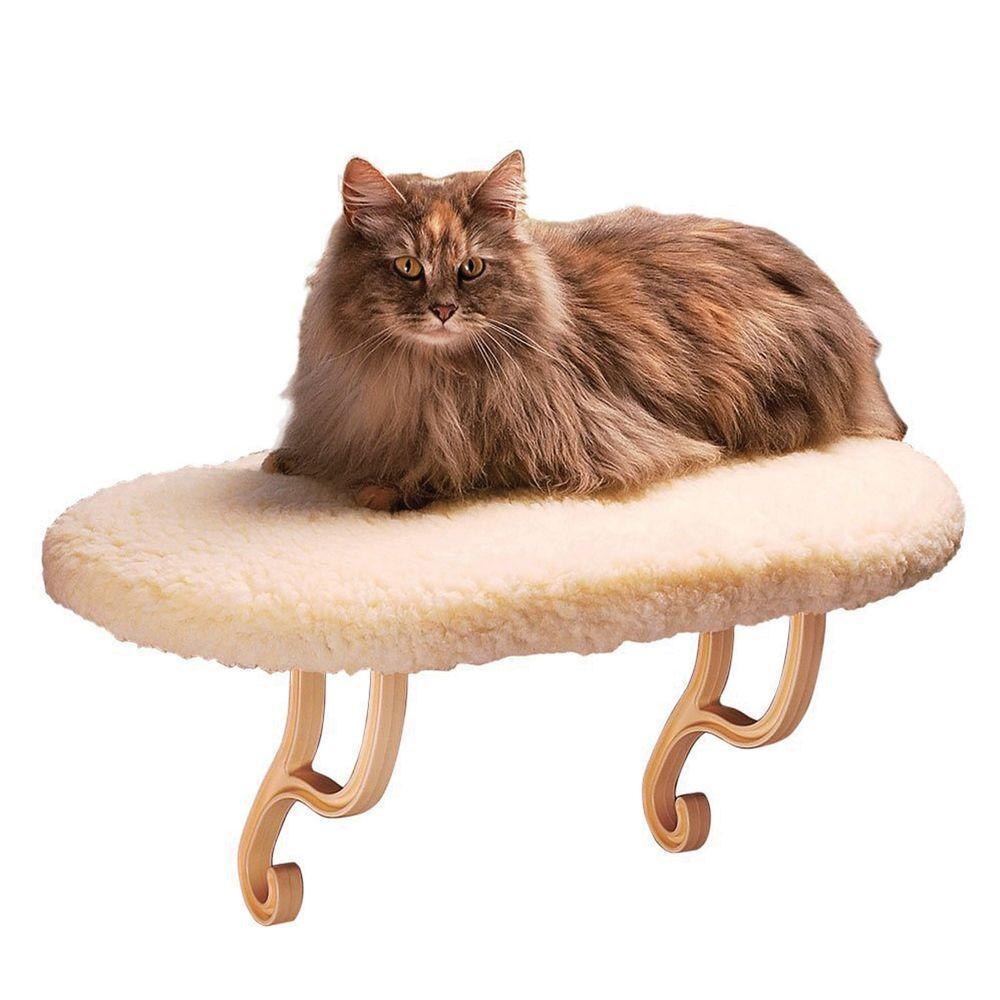 kitty s