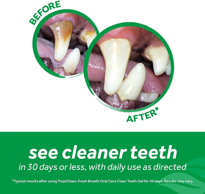 TropiClean® Fresh Breath® Clean Teeth Gel
